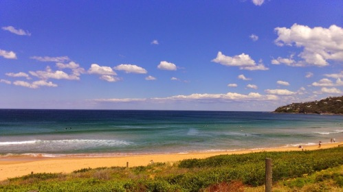 View of Palm Beach - ocean side - NSW Australia
