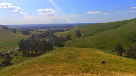Barossa Valley Lookout_SouthAustralia