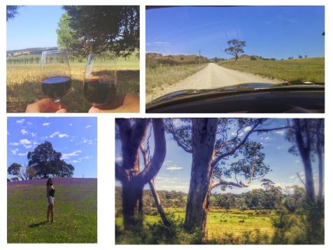 BarossaCollage_SouthAustralia