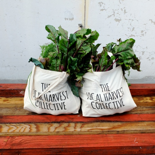 CollectiveHarvest_GreenBags_Sydney_CuriousAbout
