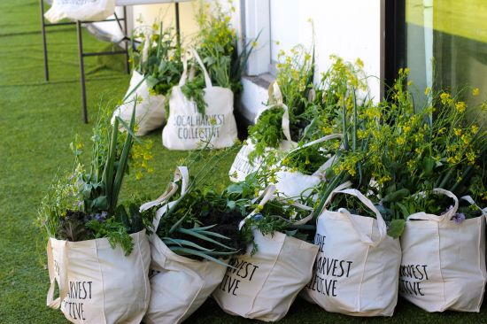 CollectiveHarvest_GreenToteBags_Sydney_CuriousAbout