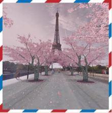 Sakura_CherryBlossomInParis_Google_CuriousAbout